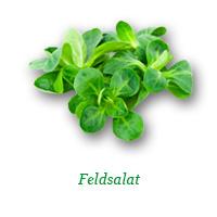 Bio Feldsalat
