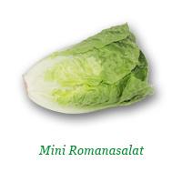 MiniRomana