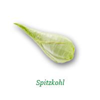 Spitzkohl